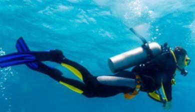 A Diver's evolution