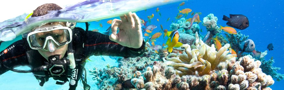 How to start SCUBA Diving?