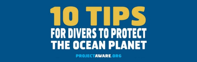 10 Tips for Divers To Protect the Ocean planet blog