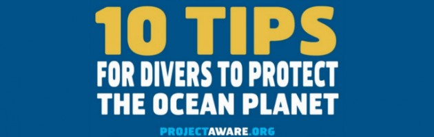 10 Tips for Divers To Protect The Ocean planet slide