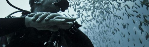 22 Reasons to SCUBA Dive banner